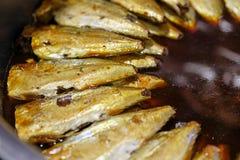 Peixes cozidos da cavala na sopa salgado Fotos de Stock Royalty Free