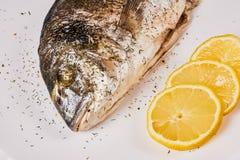 Peixes cozidos do dorada imagens de stock royalty free