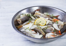 Peixes crus Fotografia de Stock