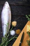 Peixes crus com especiarias Fotografia de Stock Royalty Free