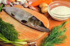 Peixes crus Cortando as mãos frescas do ` s das mulheres do pique Na tabela de madeira velha Imagens de Stock