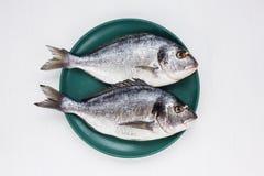 Peixes crus do dorado na placa amarela com os grãos de pimenta na tabela branca Vista superior Foto de Stock Royalty Free