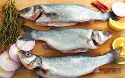 Peixes crus e vegetais Fotografia de Stock Royalty Free