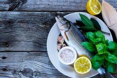 Peixes crus frescos imagens de stock