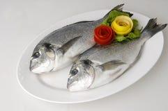 Peixes da brema Foto de Stock