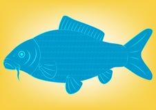 Peixes da carpa do desenho do vetor ilustração royalty free
