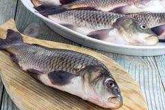Peixes da carpa em uma placa de madeira Imagens de Stock Royalty Free