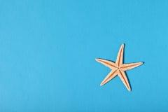 Peixes da estrela Foto de Stock
