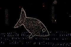 Peixes da iluminação - decoração do Natal Fotografia de Stock Royalty Free