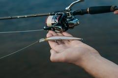 Peixes da pesca da costa com uma vara, fim acima foto de stock