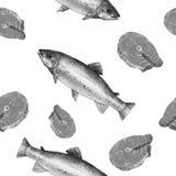 Peixes da truta de mar, ilustração da pintura da aquarela em um fundo da arte do Livro Branco Fotos de Stock Royalty Free