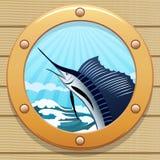 Peixes da vela Fotografia de Stock Royalty Free