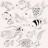 Peixes das ilustrações Oceano monocromático Foto de Stock