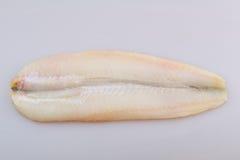 Peixes das pescadas Foto de Stock