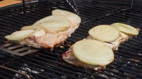 Peixes das tencas na grade Imagem de Stock