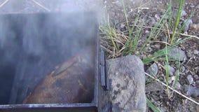 Peixes de água doce no fumeiro do metal Fundo do alimento Fundos exteriores filme
