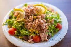 Peixes de atum com salada verde e tomates Fotografia de Stock Royalty Free