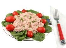 Peixes de atum e salada do espinafre foto de stock