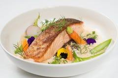 Peixes de bacalhau Imagem de Stock