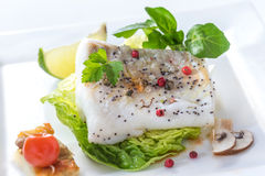 Peixes de bacalhau atlântico cozinhados com especiarias e vegetal imagem de stock royalty free