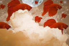 Peixes de combate da cor vermelha, movendo-se no ar, com nuvens, lua, estrelas, e ondas Foto de Stock