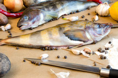 Peixes de Grinling com vegetais Foto de Stock