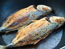 Peixes de mar que fritam em uma bandeja Fotos de Stock