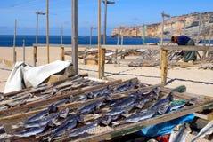 Peixes de secagem da mulher em Nazare, Portugal fotografia de stock