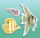 Peixes de Stikers Imagens de Stock