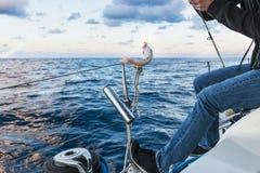 Peixes de travamento do homem do iate Pesca do por do sol, vela bonita do por do sol no mar aberto Imagem de Stock Royalty Free