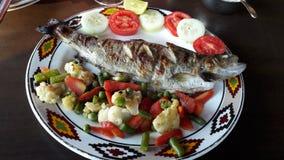 Peixes deliciosos da truta fotografia de stock royalty free