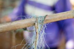 Peixes do achado da rede do pescador e caranguejo da captura Imagem de Stock
