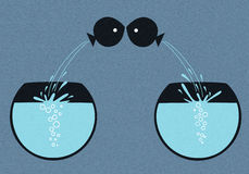 Peixes do amor imagens de stock