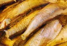 Peixes do arenque pequeno enlatados Imagens de Stock