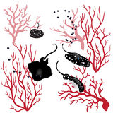 Peixes do coral e da raia Imagem de Stock