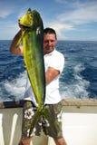 Peixes do golfinho (mahi-mahi) fotografia de stock