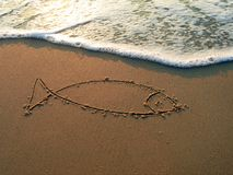 Peixes do mar Mediterrâneo Fotos de Stock