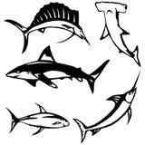 Peixes do oceano ilustração royalty free