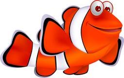 Peixes do palhaço Fotografia de Stock