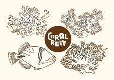 Peixes do recife de corais e desenho do contorno do vetor dos corais  Fotos de Stock Royalty Free