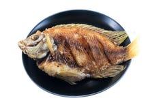 Peixes do Tilapia fritados no prato Fotografia de Stock