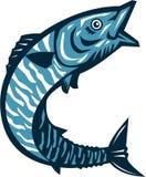 Peixes do Wahoo que saltam retro isolado ilustração do vetor