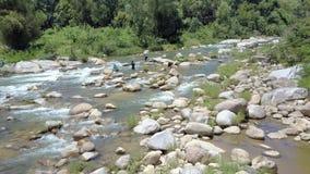 Peixes dos homens da vista aérea no rio da montanha com bancos da silvicultura vídeos de arquivo