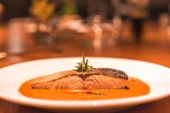 Peixes dos salmões com caril no prato no jantar da tabela imagem de stock royalty free