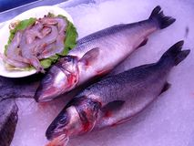 Peixes e camarões no gelo Imagens de Stock Royalty Free