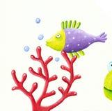 Peixes e coral roxos Fotos de Stock