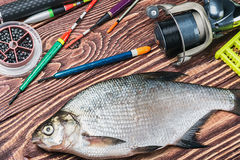 Peixes e equipamento de pesca travados em uma tabela de madeira foto de stock royalty free