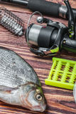 Peixes e equipamento de pesca travados em uma tabela de madeira fotos de stock