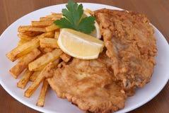 Peixes e microplaquetas Imagens de Stock