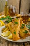 Peixes e microplaquetas Foto de Stock